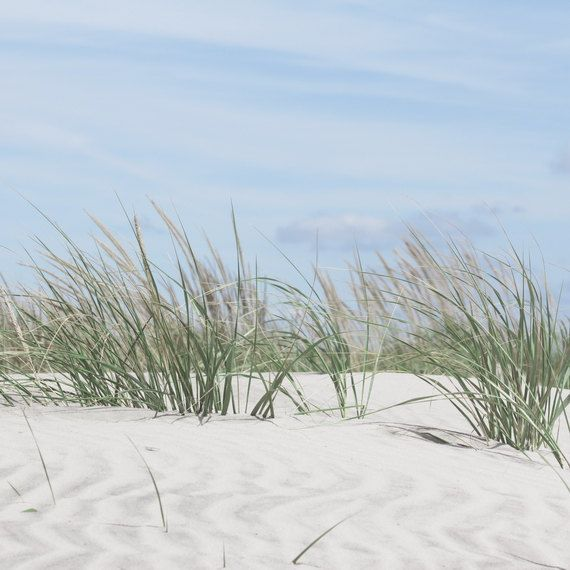 Coastal Wall Art Featuring Sand Dunes And Dune Grass This Beach Art Would Be Perfect In Any Room Of Your Hom Coastal Wall Art Beach Photography Seashore Decor