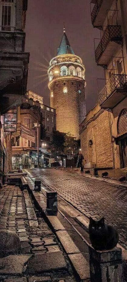 Galata Tower with a panoramic view of Istanbul.