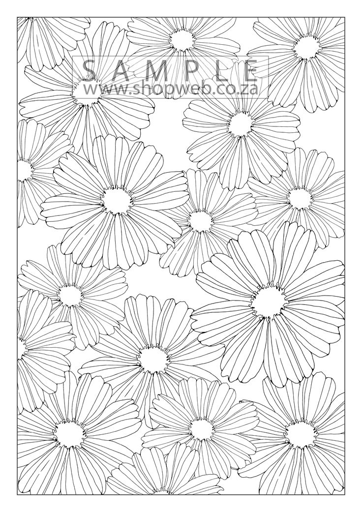 This is one in the first collection of 10 colouring pages. It can be purchased for $0.99 or they can all be purchased for a discount price of $8 from www.shopweb.co.za.