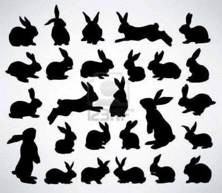 collection of rabbit silhouettes Stock Photo - 11562854