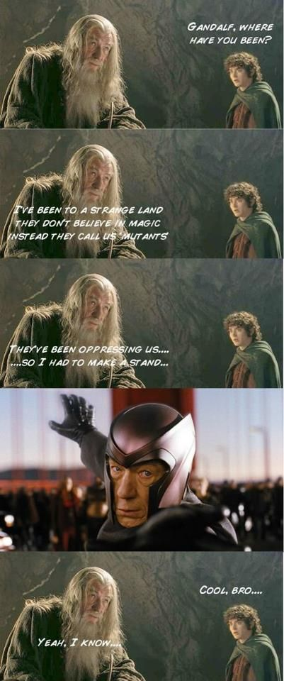 funny LOTR | LOTR | Meme, Funny Images, Jokes and more - LOLs Heaven - Part 2