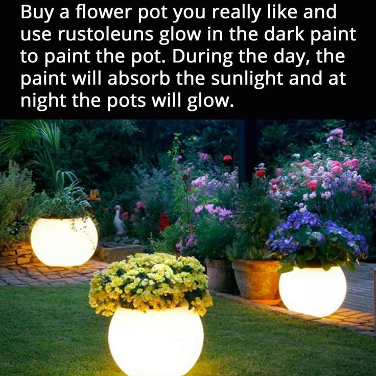 Attractive glow I the dark pot for the back yard