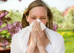 Combat chronic #sinus inflammation this spring with #bromelain! #health #nutrition