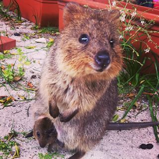 """""""We believe in you!"""" 