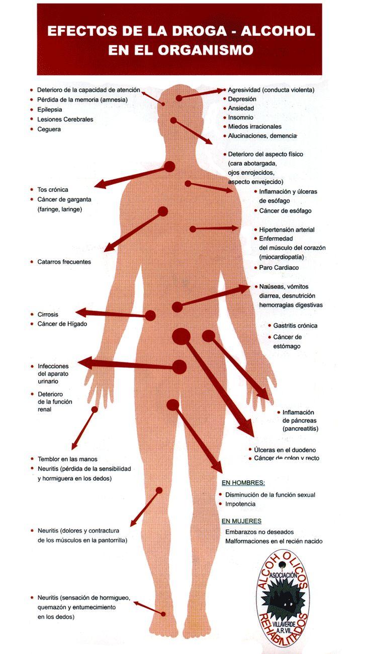 Efectos de la droga - alcohol en el organismo
