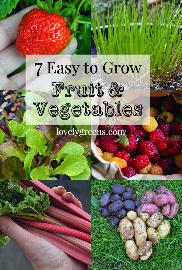 2872 best ~Backyard Veggie Gardens!!~ images on Pinterest | Garden ...