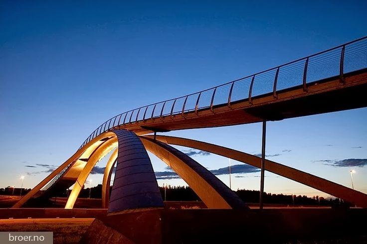 Leonardo Da Vinci's Golden Horn Bridge   Amusing Planet