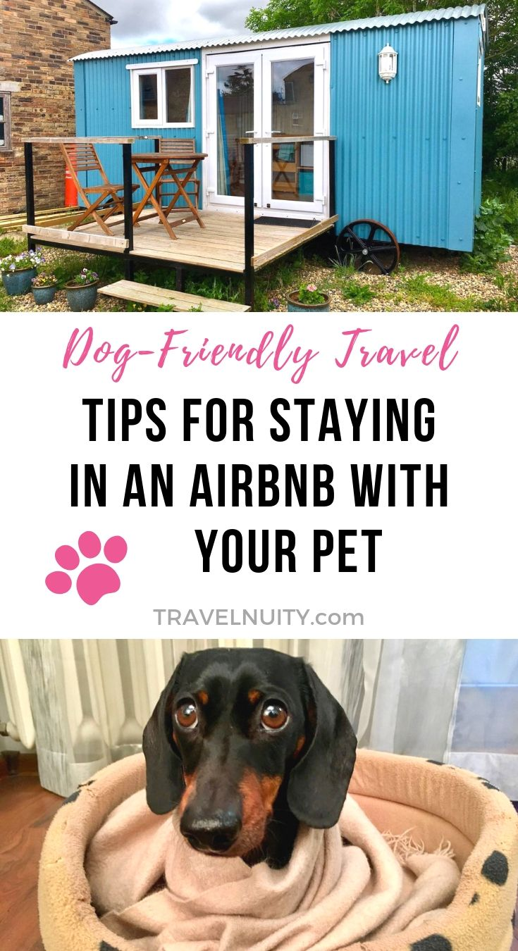 9 Tips For Staying In A Pet Friendly Airbnb With Your Pet Travelnuity Pet Travel Dog Friends Dog Friendly Hotels