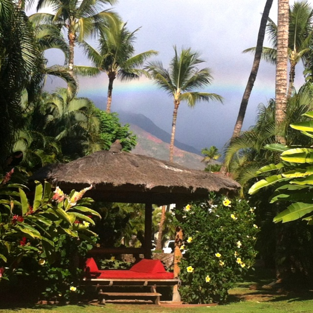 Poolside (right outside our room-nice!) at the Outrigger Aina Nalu in lovely Maui!