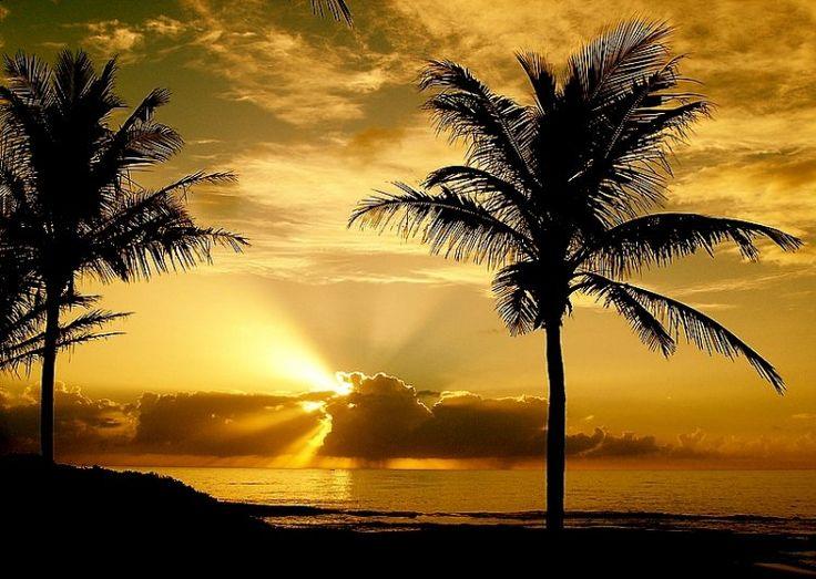 As mais lindas paisagens do mundo: Natural Beautiful, Random Quotes, Sol Lindo, Beautiful Sunshine, By The, Linda Paisagen, Beautiful Pictures, Mai Linda, Paisagen Linda