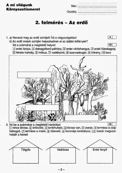 a-mi-vilagunk-kornyezet-felmerok2.o-2-page-003.jpg (1133×1600)
