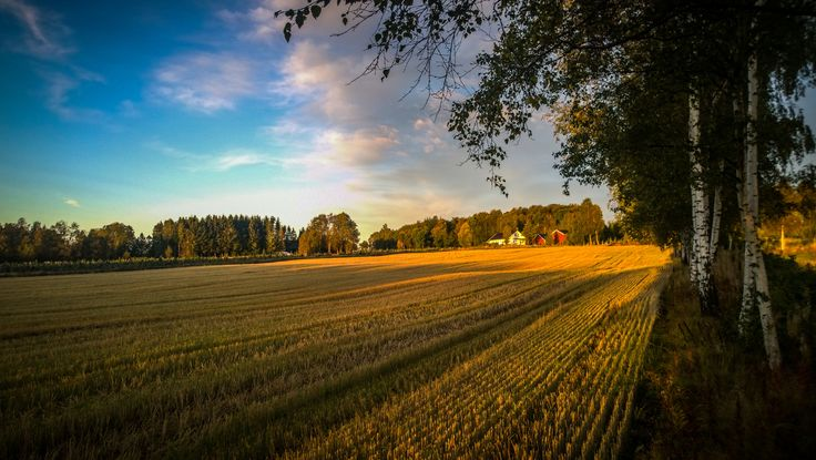 Another early sunrise when I was out hunting again.   Still waiting for mye new camera, so I used my Nokia Lumia 1020.