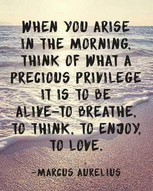 When you arise in the morning, think of what a privilege it is to be alive- to breathe. To think. To enjoy. To love. #quote