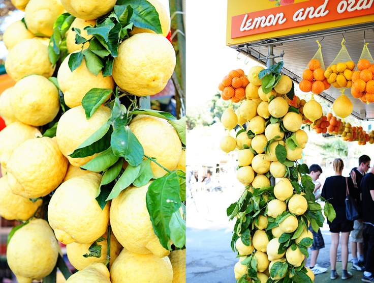 Pompeii, Italy #pompeii #travel #italy. I'm pretty sure I was at this exact station. The oranges were hanging from a vine, like those lemons were. I picked one, and it was ice-cold. The best orange I have eaten in my entire life.