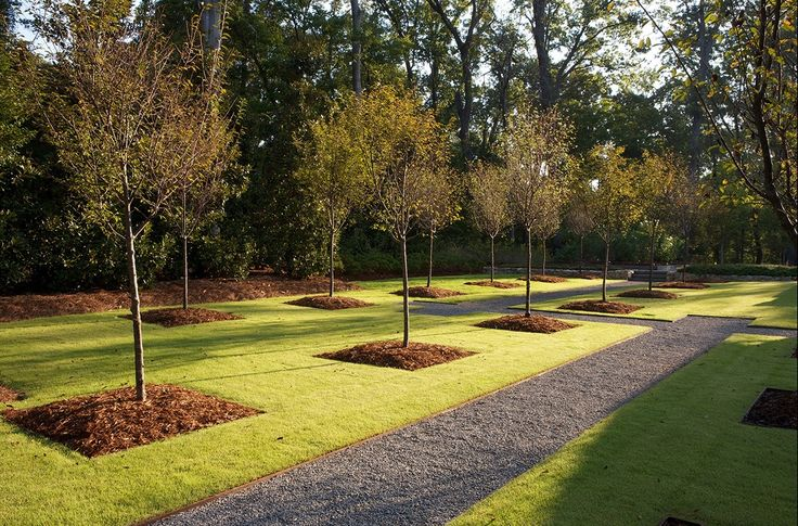 jeffrey carbo landscape architects / woodland rain gardens, caddo parish louisiana