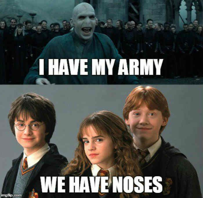 Harry Potter Memes Army And Noses Harrypotterhumor Harry Potter Voldemort Harry Potter Memes Hilarious Harry Potter Jokes