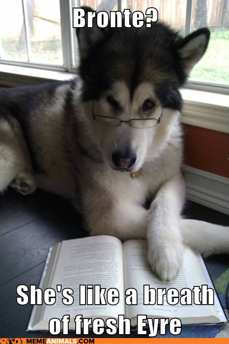Google Image Result for http://chzmemeanimals.files.wordpress.com/2011/12/advice-animals-memes-condescending-literary-pun-dog-her-sister-brings-the-written-word-to-new-wuthering-heights.png