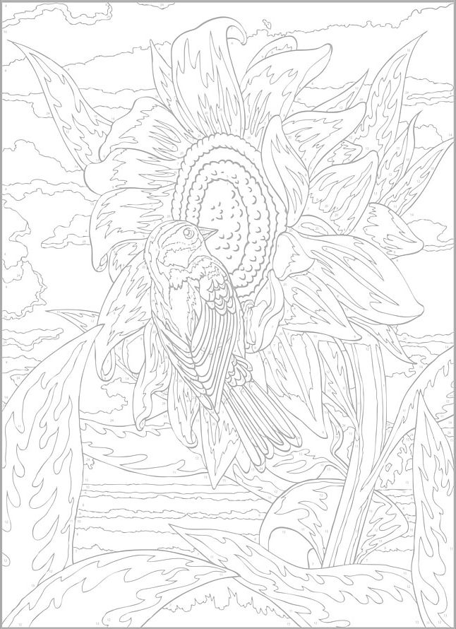 458 besten Download - Coloring Pages Bilder auf Pinterest ...