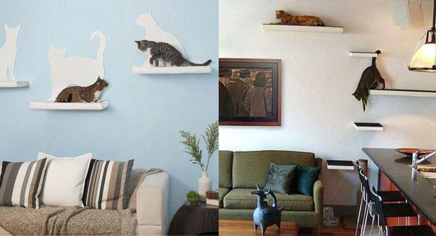 etagere chat salon                                                       …