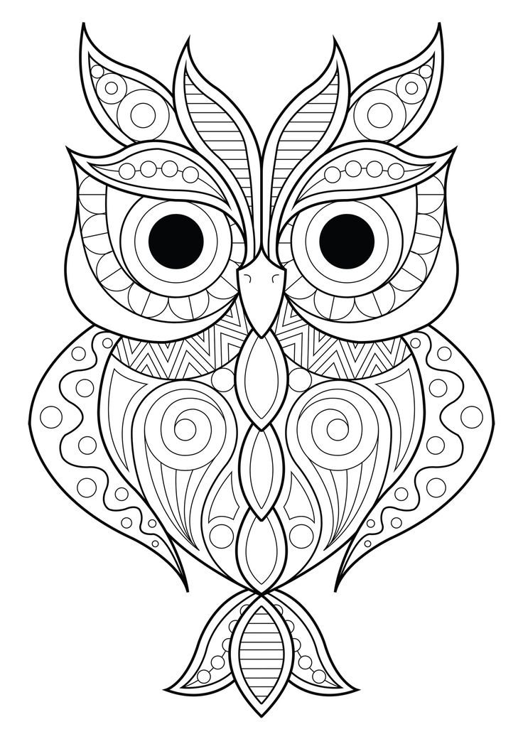 26+ Printable owl coloring pages for adults information