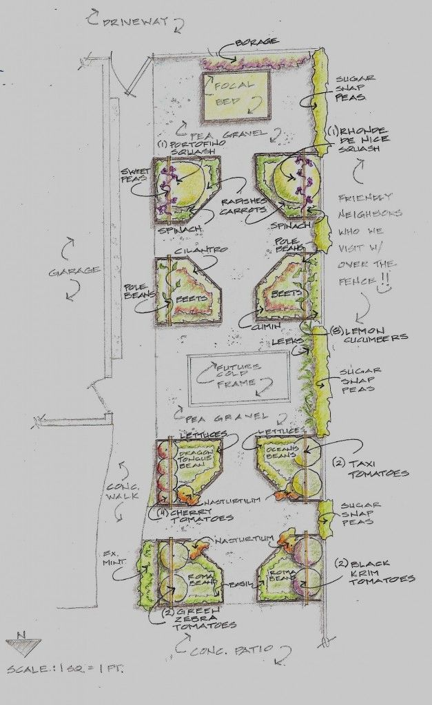 264 best images about permaculture garden project ideas on for Potager permaculture plan