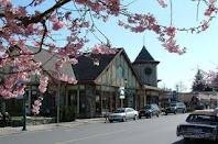 Qualicum Beach's idyllic downtown stroll, complete with flowering cherry blossoms.