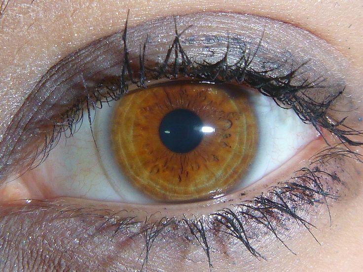 Máte hnedé oči? Potom by ste mali vedieť o sebe niečo špeciálne | Chillin.sk