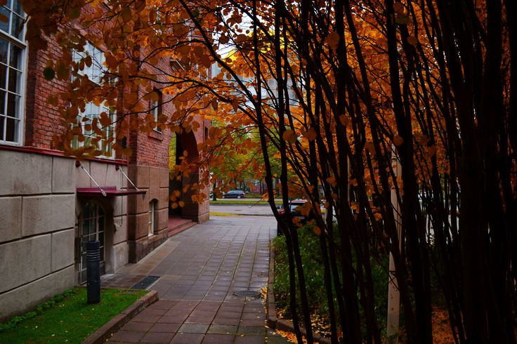 Autumn Helsinki