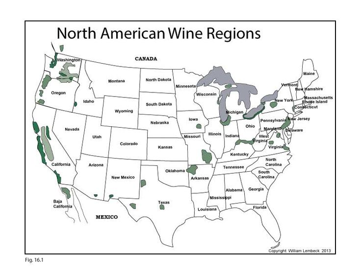 Best USA Wine Maps Images On Pinterest Wines Infographics - Us wine regions map