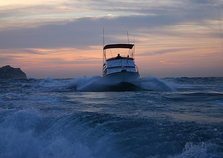 17 best images about fishing in cabo san lucas on for Fishing in cabo