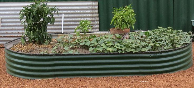 Best 25 Cheap Raised Garden Beds Ideas On Pinterest Garden Box Raised Diy Garden Box And