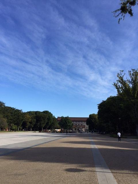 上野恩賜公園の交番前から東京国立博物館方面