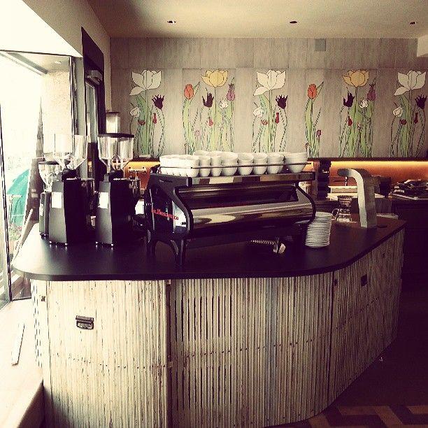 Cafe Frühling in Basel, Basel-Stadt