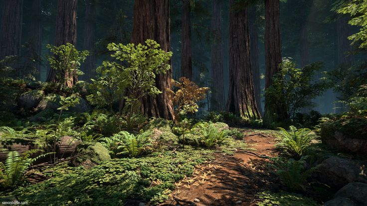 Redwood Forest UE4 Video, Simon Barle on ArtStation at https://www.artstation.com/artwork/0a3v4