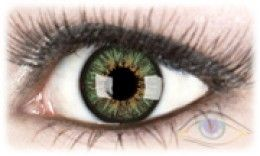 Europa green contact lens on brown eyes