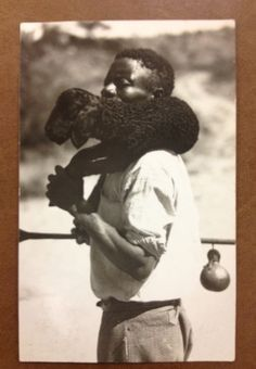 """ Carrying a Karakul sheep "" . South West Africa; late 19th century, early-20th century"