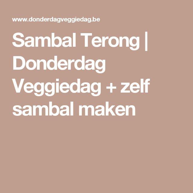 Sambal Terong | Donderdag Veggiedag + zelf sambal maken