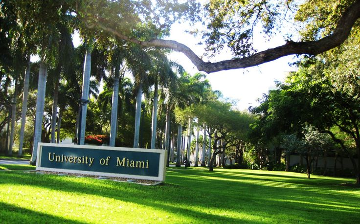 university+of+Miami | ing we dropped the top on the convertible again and
