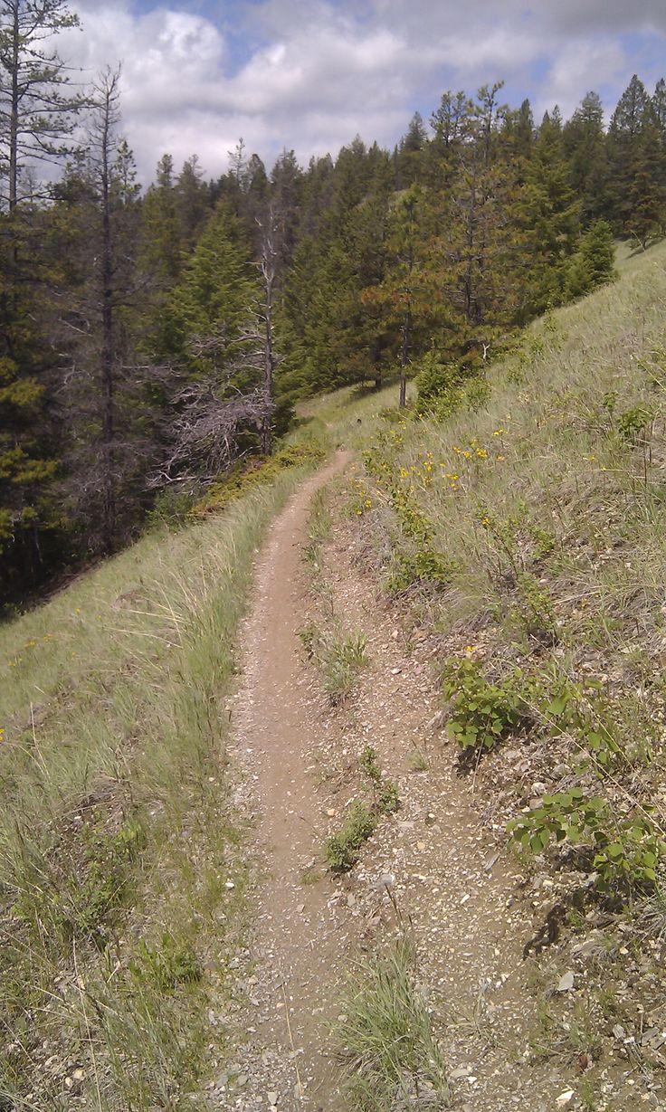 Wabasso trail