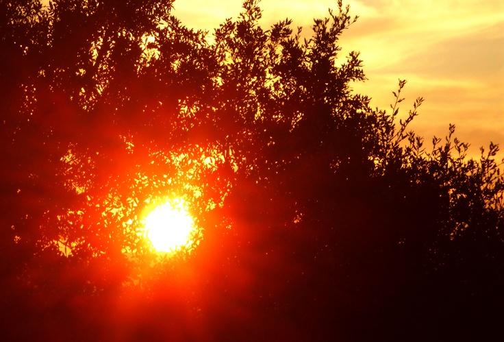 Rosso di sera, Oliena 05-04-2012