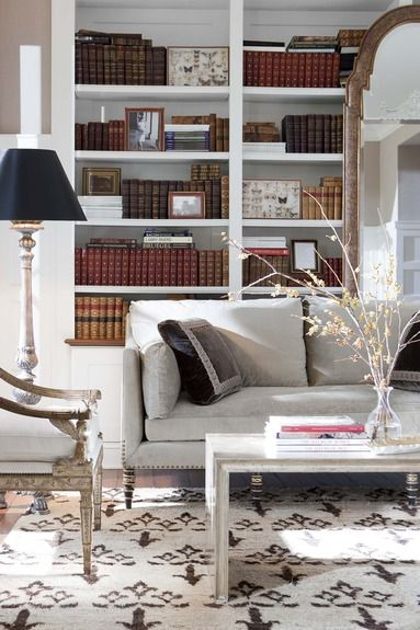 Bookshelves, area rug & sofa in neutral with hits of black to anchor