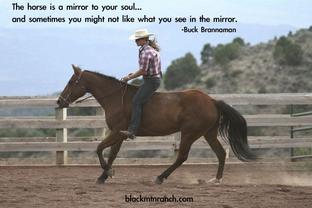 I just love this picture, but I want to ride both bareback and bridless on my horses.