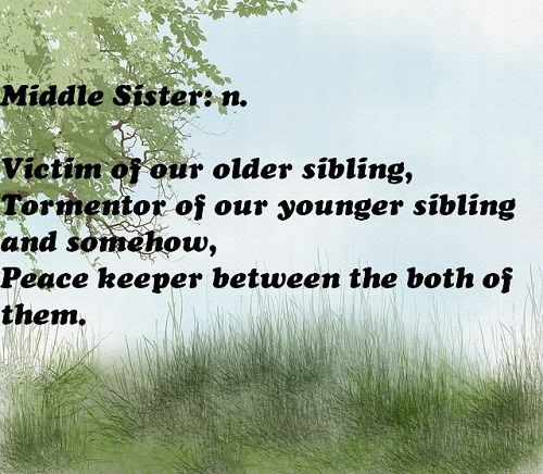 Top 100 Sister Quotes And Funny Sayings With Images: 31 Best Funny Sister Quotes Images On Pinterest