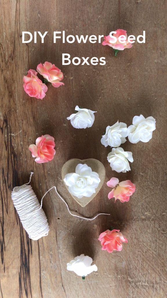 DIY Flower Seed Boxes