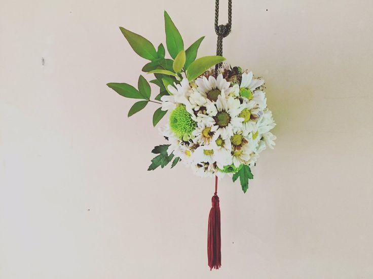 本日は旧暦の重陽の節句。菊の薬玉をつくり邪気払い。いのちとチカラの若がえりについて祈る日。
