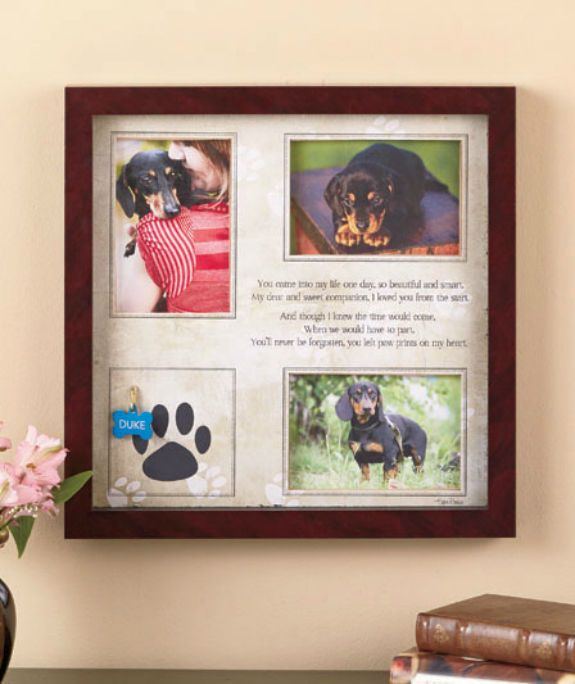 Pet Memorial Shadowbox Dog Cat Collage Photo Frame Paw Print Pictures Wall Frame #Unbranded