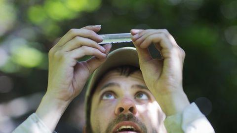 Trodde du det var mange uoppdagede arter i Amazonas? Du skulle bare visst hva norsk natur skjuler. - Aftenposten