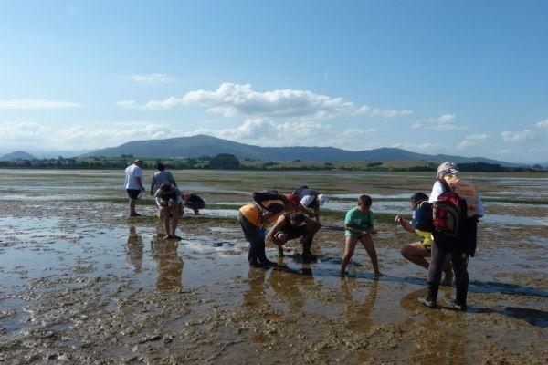 Jornada de turismo y marisqueo (7 noviembre 2012) | Cantabria | Spain