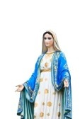 VIrgin Mary Statue in front of the cathedral of the immaculate conception stock photography