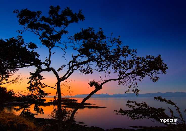 The best spot in Nanaimo, British Columbia - Neck Point Park